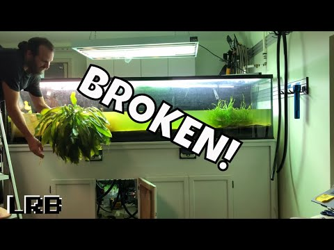 Wrecked! 240 Gallon Planted Aquarium Busted and Leaked from YouTube · Duration:  22 minutes 45 seconds