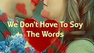 We Don't Have To Say The Words Lyrics /Gerard Joling