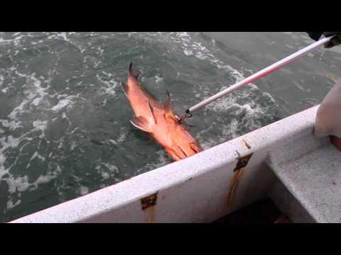 Back Water Fishing Charters(Nicaragua)