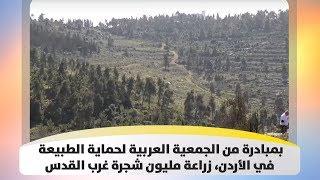 بمبادرة من الجمعية العربية لحماية الطبيعة في الأردن، زراعة مليون شجرة غرب القدس