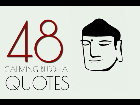 BUDDHA.48 Calming Quotes about life.