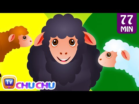 Baa Baa Black Sheep and Many More Kids Songs  Popular Nursery Rhymes Collection  ChuChu TV