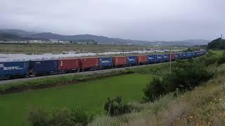 동해발 영일만항행 컨테이너 수송 화물열차 3093+DE…
