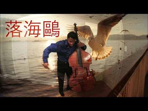 Xavier Foley - 落海鷗 (The Falling Seagull)