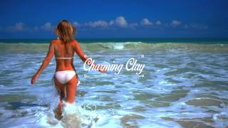 Oliver Schories - Undisguised (Rico Puestel Remix) | Charming Clay