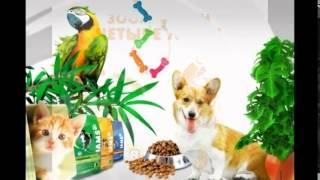 видео Интернет-зоомагазин товаров для животных - купить зоотовары с доставкой в Москве в магазине «Четыре Лапы».