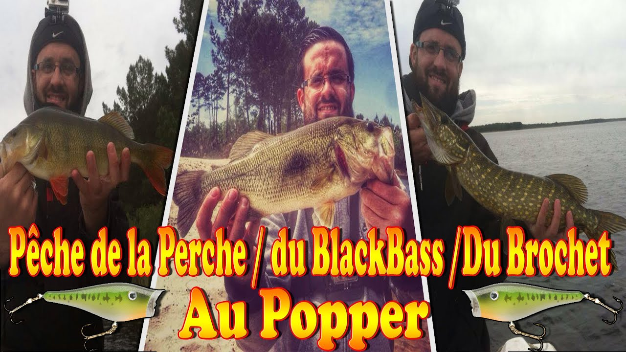 48d53b81db8 Pêche du Brochet / BlackBass / Perche au Popper - Attaque en direct - GoPro  HD