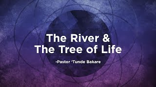 The River and The Tree of Life   Pastor
