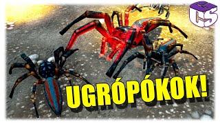 Meglepett az ugrópók sereg! | Empires of the undergrowth