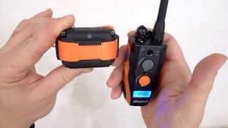 Видео обзор электронного ошейника