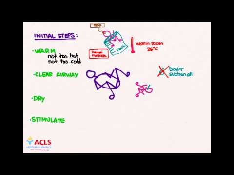 NRP Initial Steps  by ACLS Certification Institute