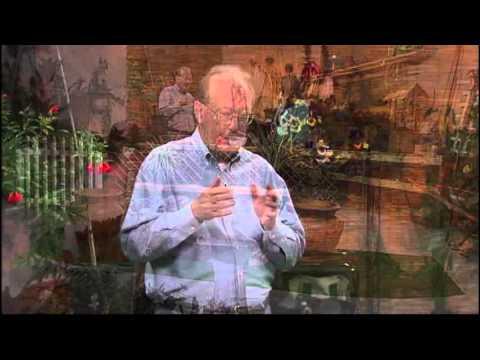 Gardener's Hotline - Pomegranates and Other Fruit