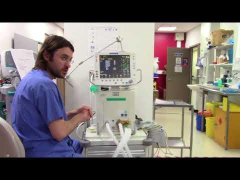 GE Engstrom Carestation Ventilator basic user guide training