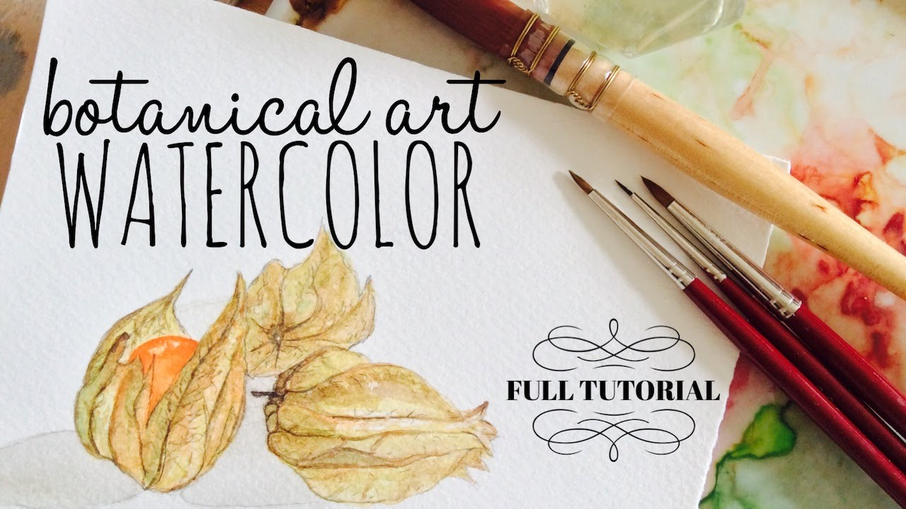 Free illustration watercolor pigment color free image - How To Use Watercolour Tutorial Botanical Art Physalis Ground Cherries Youtube