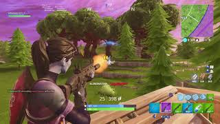 Fortnite dub - how to get dubs (end game)