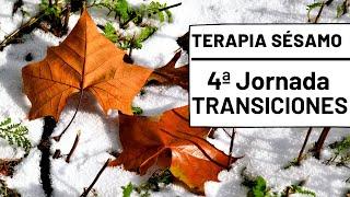 Transiciones - Terapia Sésamo