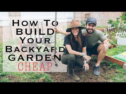 5-cheap-diy-home-garden-tips-to-grow-your-own-vegetables