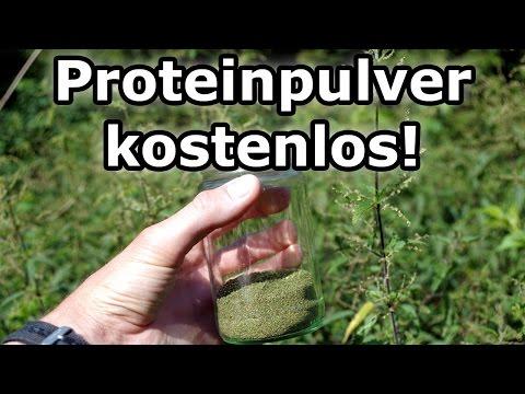 Proteinpulver kostenlos selber