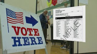 Mpls. Mayoral Election Results To Lag