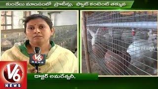 Sagubadi | Rabbit Farming Techniques | Rabbit Meat | Agriculture - V6 News