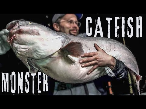 Missouri River MONSTER Blue Catfish - Fishing Heavy River Current