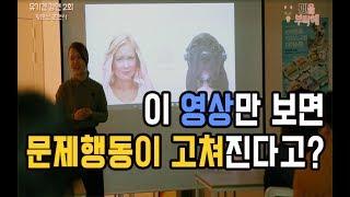 [강아지 훈련] 강아지 문제행동 교정법 - 황문선 훈련사 l 펫을부탁해