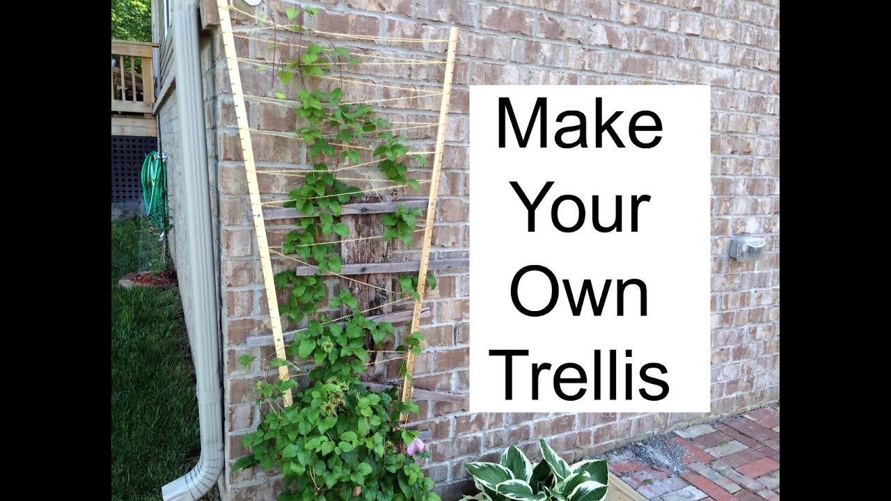 make your own trellis youtube