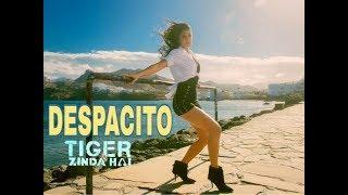 Tiger Zinda Hai Song -  Despacito Hindi Version | Salman Khan | Katrina Kaif