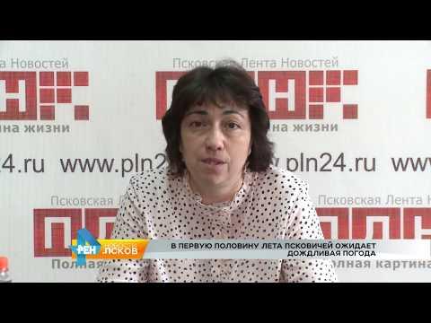РЕН Новости Псков 08.06.2017 # Дождливая погода