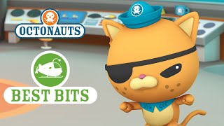 Octonauts: Kwazii's Best Bits