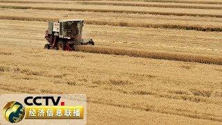 《经济信息联播》 20190612  CCTV财经