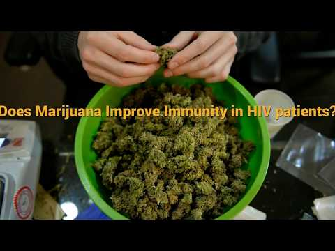 Does Marijuana improve immunity in HIV Patients? - Pot Valet Marijuana Delivery