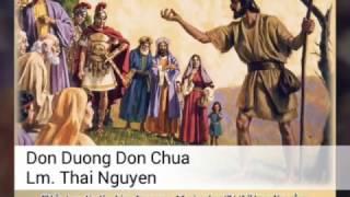 Dọn đường đón Chúa _ Lm. Thái Nguyên ( Album Thánh Tình Ca)