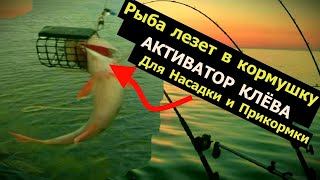ЗА 30 ЛЕТ РЫБАЛКИ Я ПРО ЭТО НЕ ЗНАЛ РЫБОЛОВНАЯ НАСАДКА FENNEL Активатор клёва Арома для рыбалки