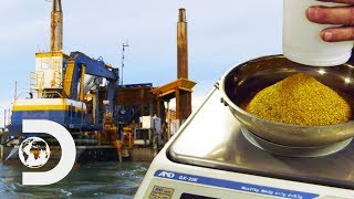 The Myrtle Is Off To A Great Start After Digging More Than 100 Oz Of Gold | Gold Divers