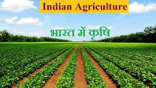 Agriculture in india hindi  | भारत में कृषि | Indian Agriculture | Khetibagwani.com