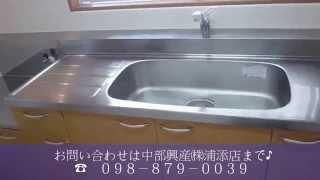 グリーンシャトーⅡ3LDK101号室【動画】