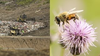Eastern Canada's first ever commercial beekeeping program.