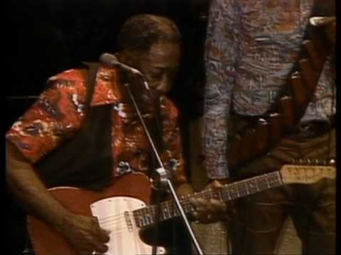 Muddy Waters - They Call Me Muddy Waters - ChicagoFest 1981