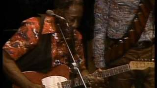 Watch Muddy Waters They Call Me Muddy Waters video