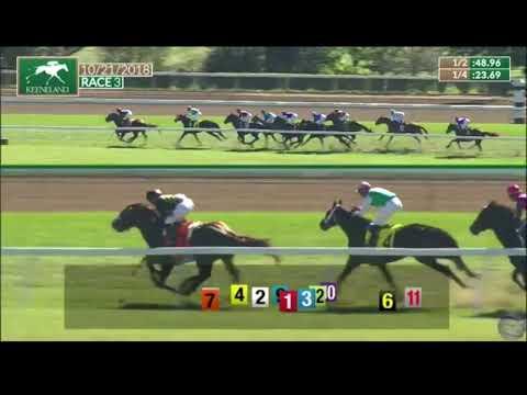 Horse named Tuaandtwentysix competes at Keeneland Racecourse