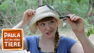 Vorsicht Schlange (Doku)  Reportage für Kinder  Paula und die wilden Tiere