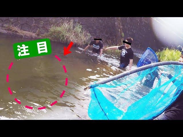 釣りいろは動画