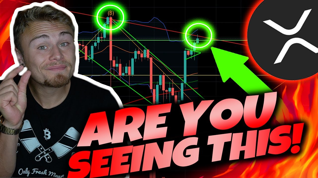 XRP RIPPLE HOLDERS! *THIS IS VERY IMPORTANT!* XRP PREPARES FOR BREAKOUT! [In Case We Fall]