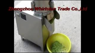 Vegetable Chopping Machine, Radish Cutter, Vegetable Chopper Machine