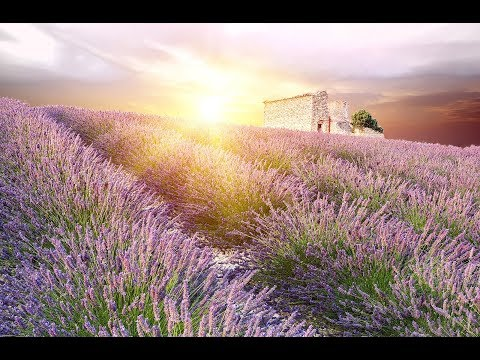 GOOD MORNING MUSIC   Boost Positive Energy   528Hz  Wake Up Music - A Beautiful Day  - A Magical day