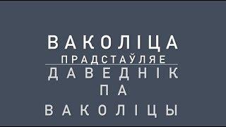"""Даведнік па Ваколіцы 2  выпуск - """"Выборы - обманывают или обманываемся?""""?"""