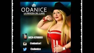 Saludo De Odanice Para Producciones Fichi