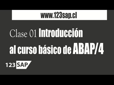 2.1 Curso ABAP | Clase 01 Introducción al curso básico de ABAP/4 - Consultor SAP