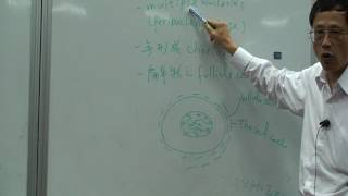 [1001海大開放式課程]魚類生理學 8-5